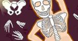 Skelet Samenstellen spel