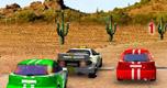 3D Rally Racing spel