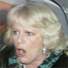 Prince Charles is Inbred, Attack Him