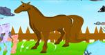 Paard Aankleden