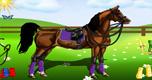 Paard Aankleden 2