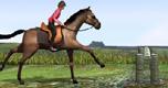Paardenjuming spel