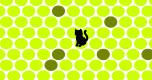 Zwarte kat spel